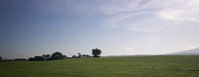 Lonely Breeze