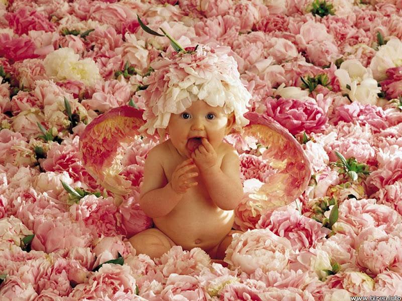 sweet baby boy in the flowers
