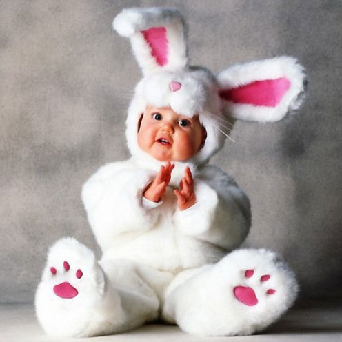 Cute baby like bunny dressing picture