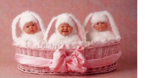 Cute baby like bunnies dressing picture