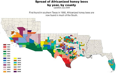 Killer Bees In Usa Map on killer bees in new jersey, killer bee map 2014, killer bees in california, killer bees in new mexico, killer bees in arizona, killer bees in america, killer bees in japan, killer bees in utah, killer bees in united states, killer bees in kansas, killer bees in michigan, fire ants in usa map, hurricanes in usa map, killer bees in florida, killer bees in oregon, africanized bees map, killer bees in wisconsin, killer bees in china, killer bee migration map, killer bees in alabama,