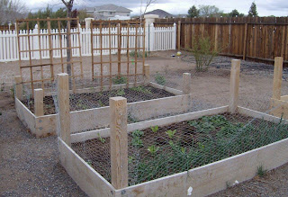 to Build Raised Garden Beds