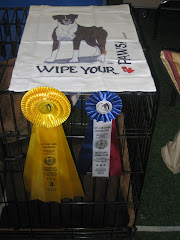 Best in Breed, Third in Group, Hochelaga Kennel Club, St. Lazare, Quebec, May 09