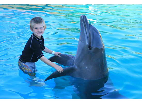 [smiling+ben+and+dolphin.htm]
