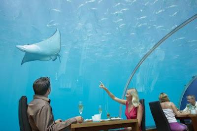 Wisata-Wisata Bawah Laut Paling Menakjubkan Dunia