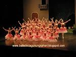 Sekolah Ballet & Jazz by Marlupi Dance Academy Gunung Sahari