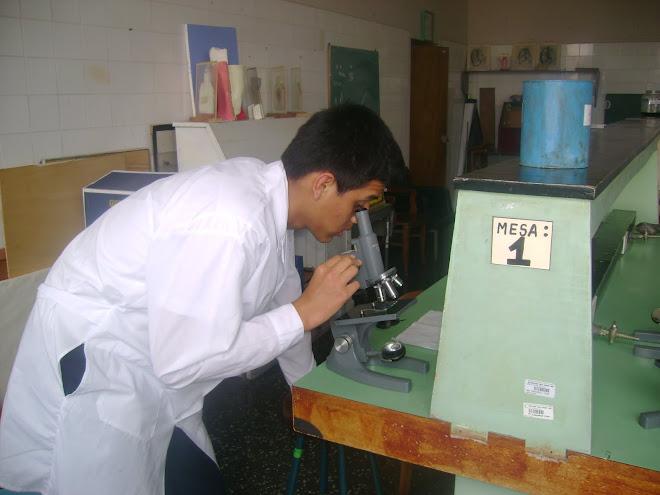 IV OLIMPIADA IBEROAMERICANA  DE BIOLOGIA O.I.A.B. LIMA - PERU. 2010