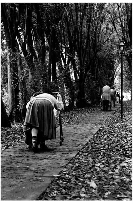 Cotolengo Don Orione - ensayo año 2000