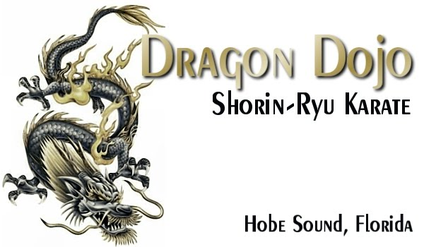 Dragon Dojo in Hobe Sound