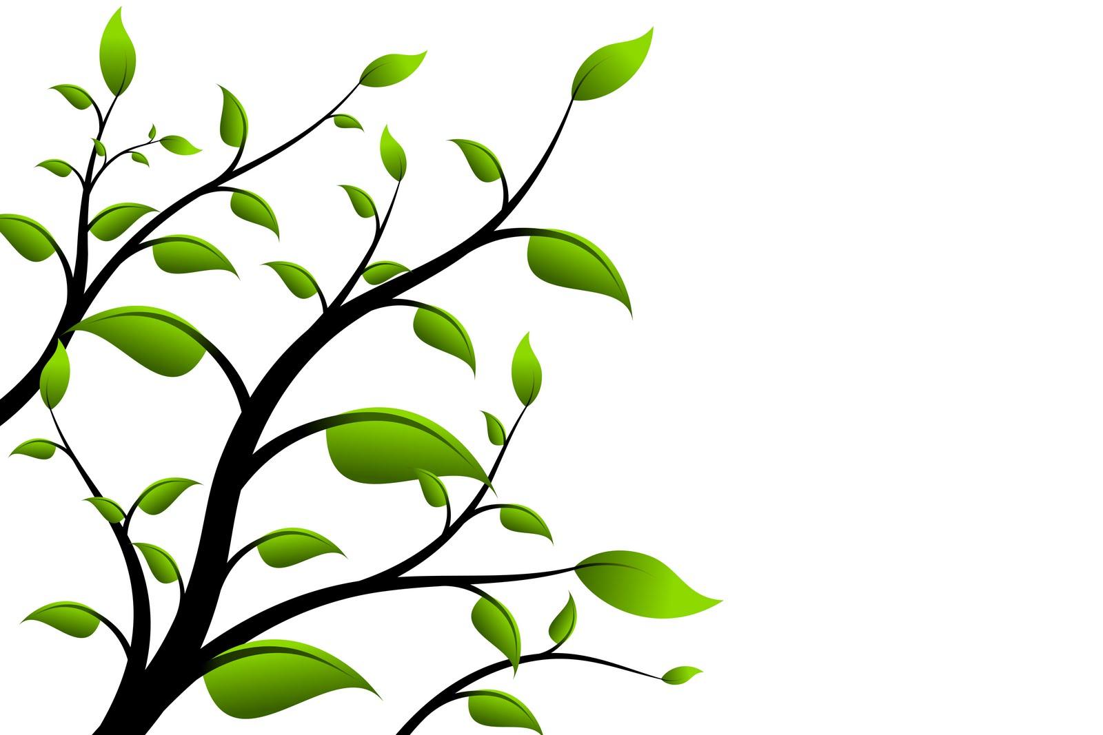 Defini o de meio ambiente e ecologia di rio do verde for Ambiente design