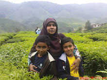 CAMERON HIGHLANDS - 2009