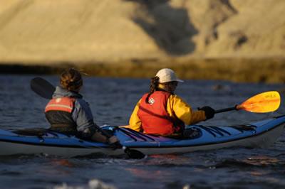 Patagonia Adventure in Kayak Peninsula Valdes  Argentina