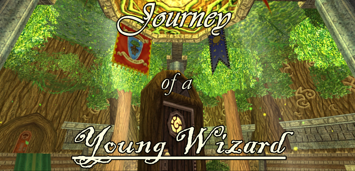 The Journey of a Young Wizard