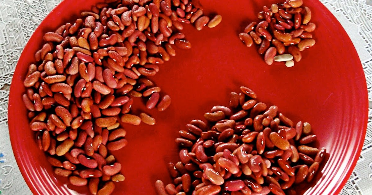 rice and beans essay Jamaican rice and peas (or caribbean red beans and coconut rice) is an easy and flavorful side dish that brings a fun tropical flair to your meal curious cuisiniere travel the world from your kitchen.