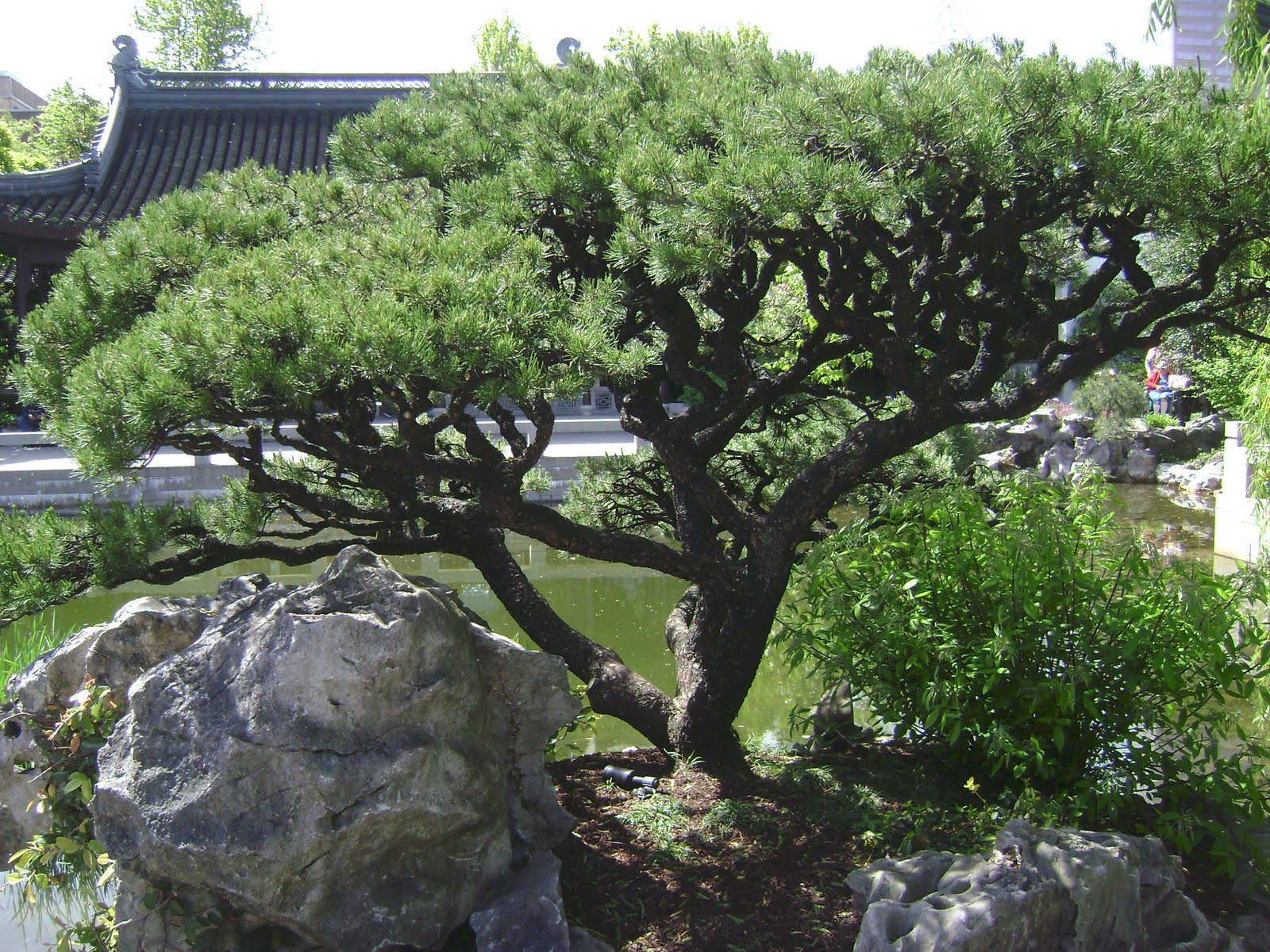 According To The Garden's Website, A Traditional Chinese Garden Is
