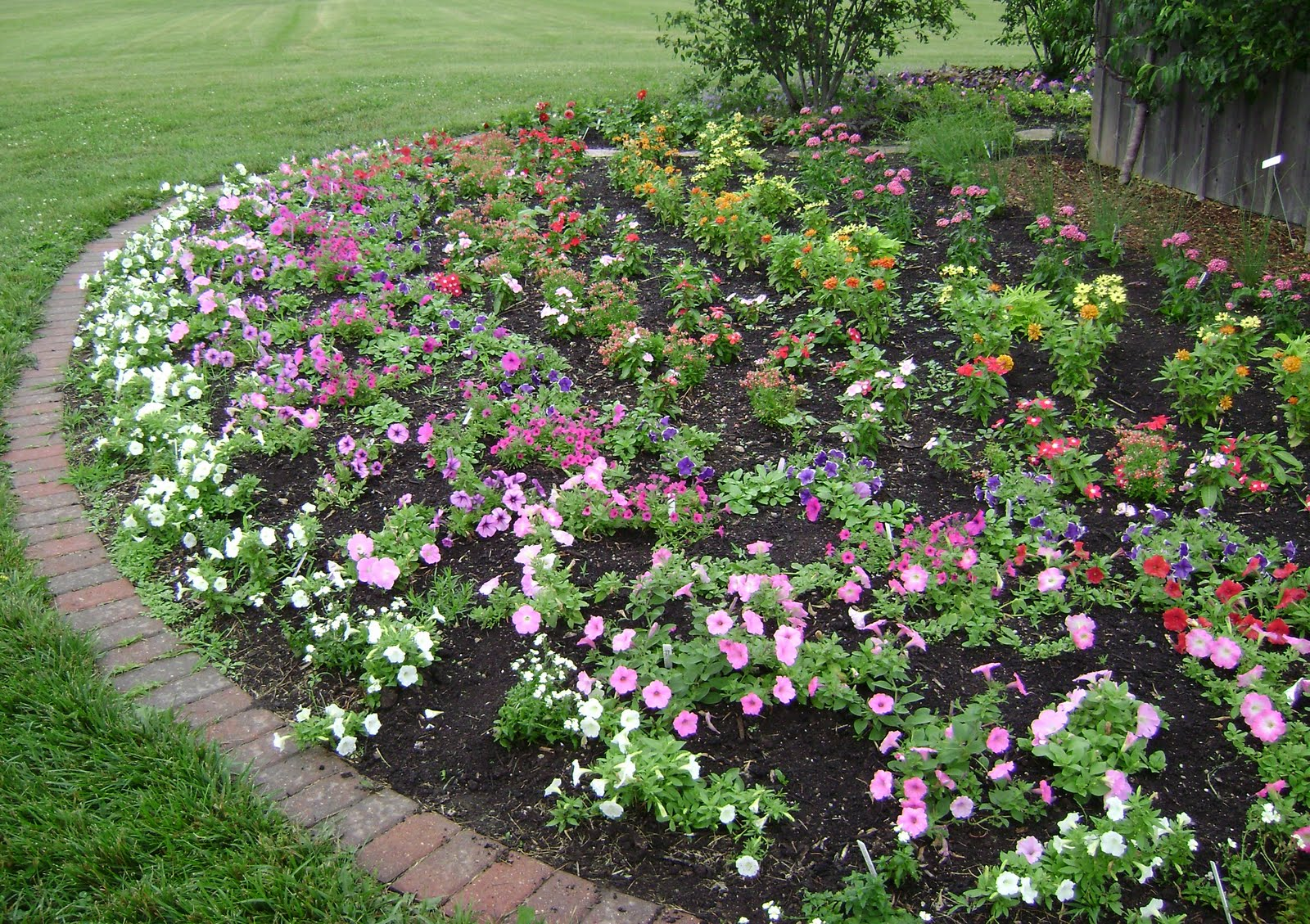 Landscaping Ideas Rose Garden : Garden ideas galore in the idea prairie rose s