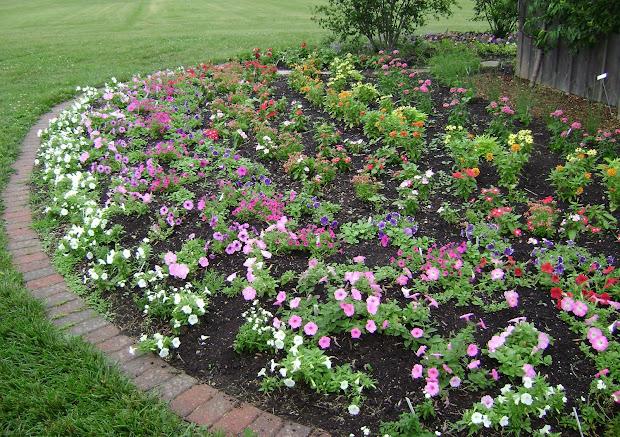 prairie rose's garden ideas galore