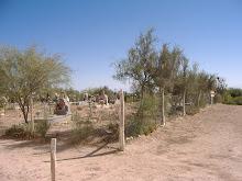 Cementerio Lagunero - Lavalle