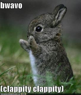 funny-pictures-bravo-bunny.jpg