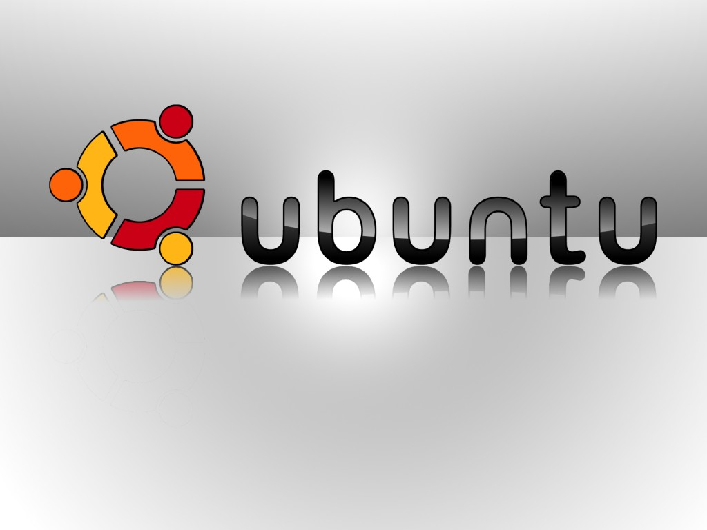 Cloning Harddisk with Ubuntu 10.04