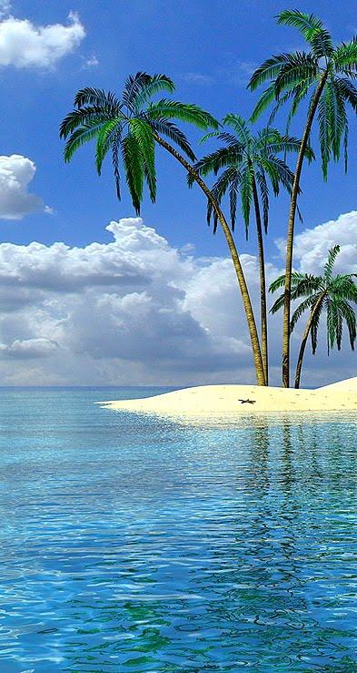 [tropical+island]