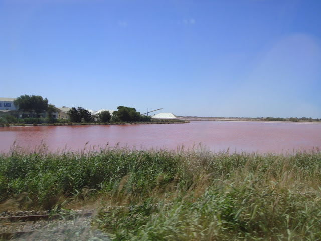 camargue eau rose