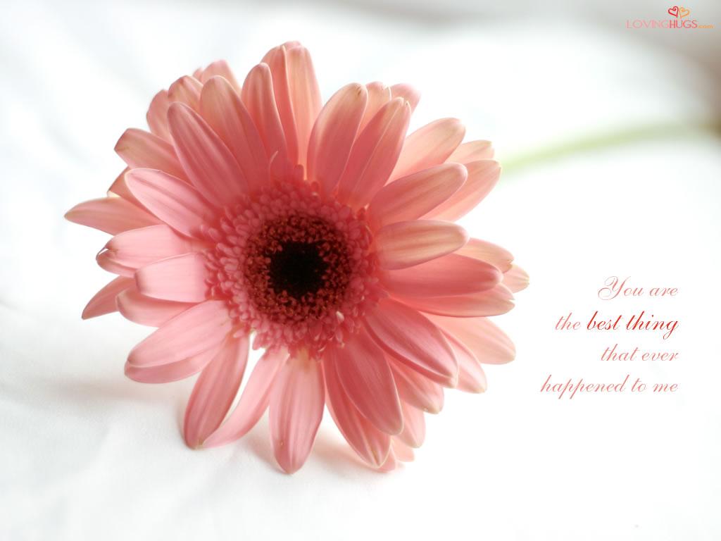 http://2.bp.blogspot.com/_C1zj0Z2wOog/TBNNUC1gbtI/AAAAAAAAAho/PzR750FBsP0/s1600/love-wallpaper14.jpg