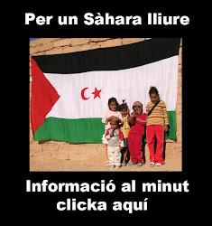 INFORMACIÓ SAHARA