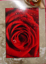 vacker ros