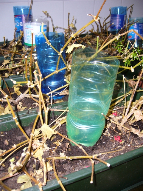 Mammatrafficona un modo utile per riciclare le bottiglie for Come costruire un telaio a buon mercato