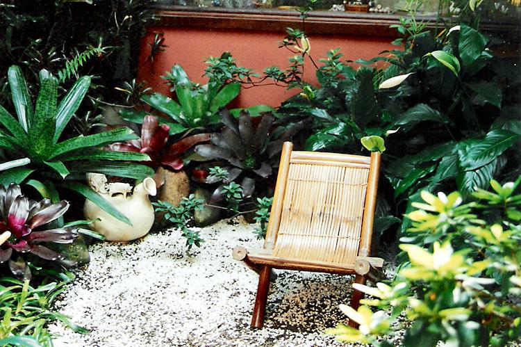 plantas brasileiras jardim:Criando um Jardim:Decoração Top