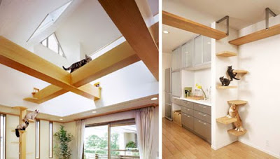 Interior Design | Coolest Cat friendly House Design from Japan ...