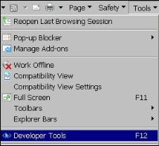 Enable Developer tool in IE 8