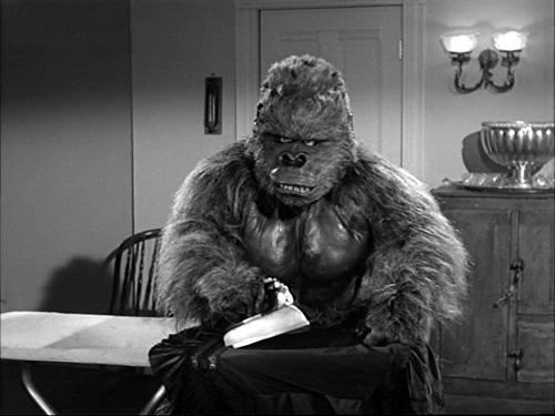 hillbilly ape