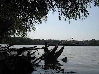 la asteptare   7 aug 2010