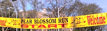 pear blossom banner