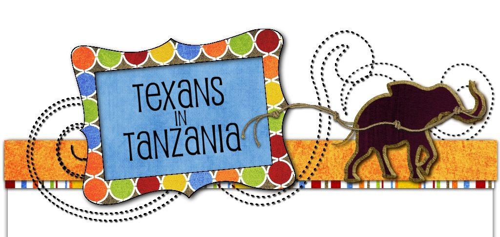Texans in Tanzania