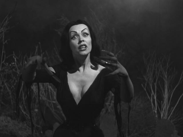 Vampira - Picture Colection