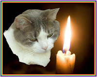 Light a Candle for Roscoe