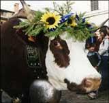 Le Retour des Alpages Oct.13