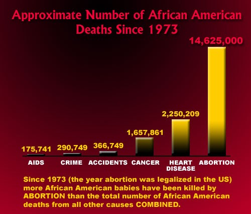 a look at the hostory of abortion in america since 1973