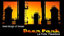 Best Of Texas Blogs: Deer Park, Texas
