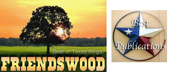 Best of Texas Blogs: Friendswood
