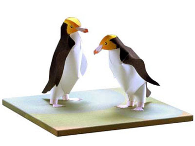 Yellow eyed penguin papercraft