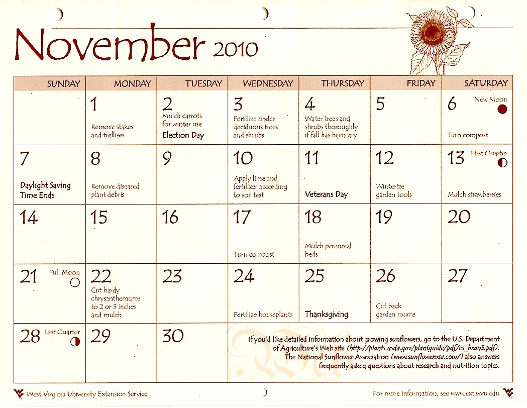 Hedgesville Ward Relief Society  November 2010