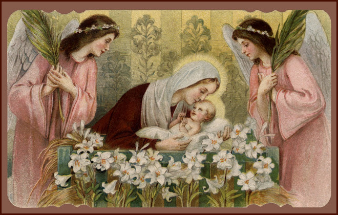 A Crown of Roses ~~ The Most Holy Rosary ~~