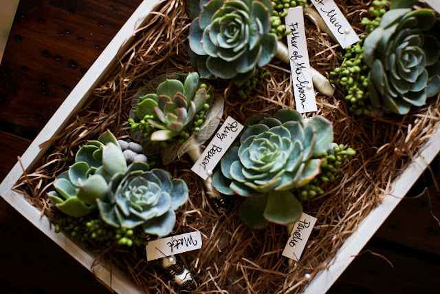 succulent-boutonnieres-sunstone-winery-wedding