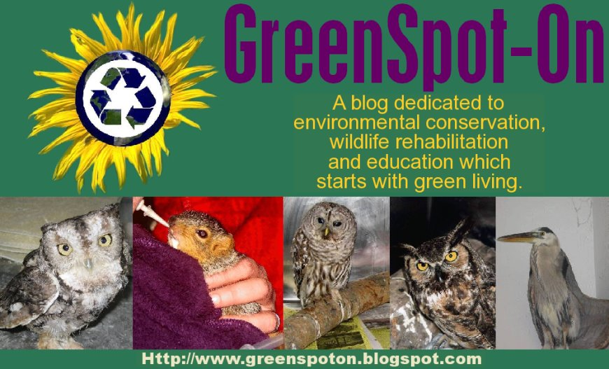 GreenSpot-On