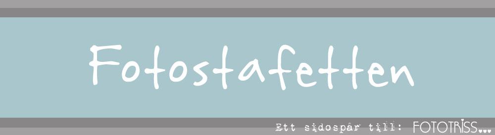 Fotostafetten - ett sidospår till Fototriss