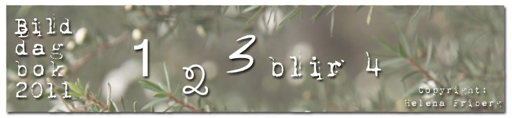 En, två, tre blir fyra - bilddagbok 2011